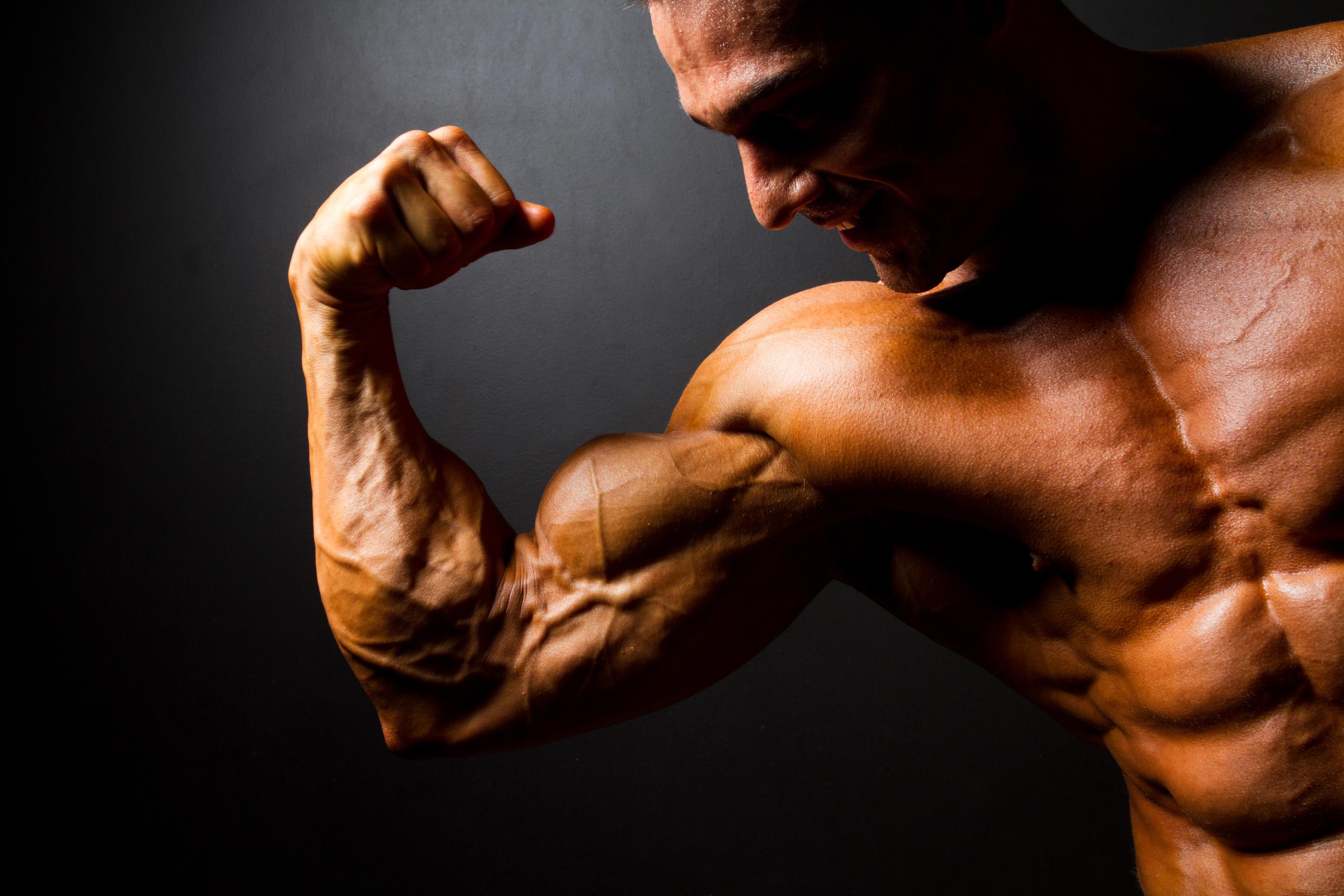 генотропин для мышц